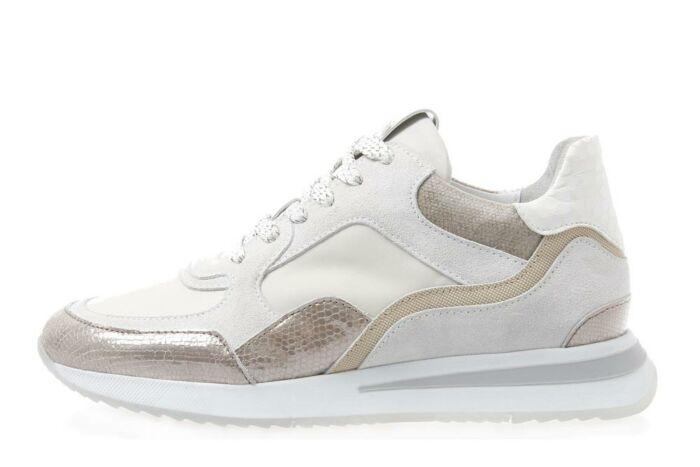 sneaker 5607017-004 Toluca c